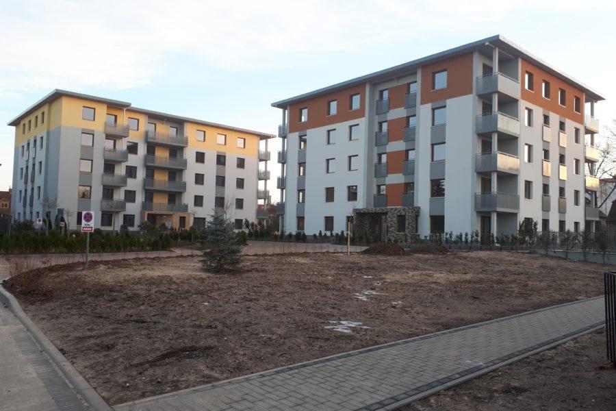 Budowa na ul. Zwycięzców w Żarach